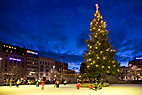 Juletræ midt på skøjtebanen - Christmas tree in center of colourful illuminated ice rink
