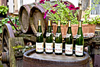 Vinhanden i Alsace - Wine shop in Ribeauville Alsace France